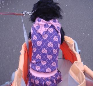 20100404_007