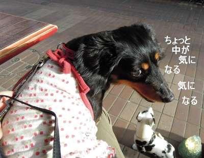 2011070901_011