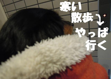 201200201_008