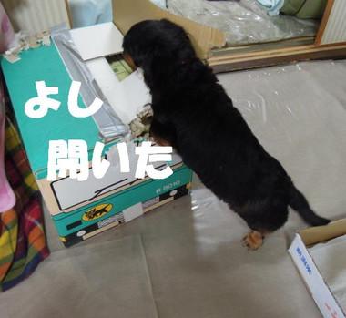 201200428_004
