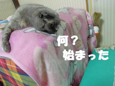 201200428_014_2