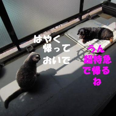 201200428_011