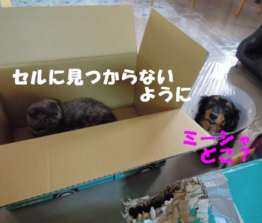 201200511_011