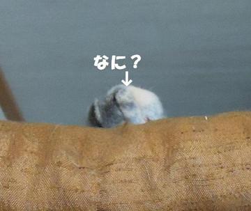 201200602_010