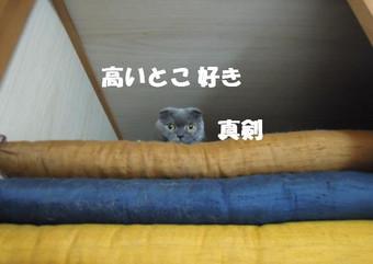 201200702_005_2