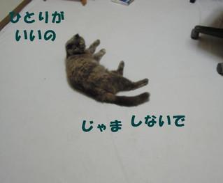 20120810_003