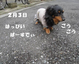 2014020_006