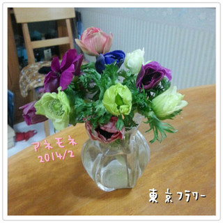 Photogrid_1392300250787_2