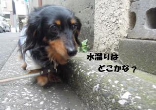 20140131_007