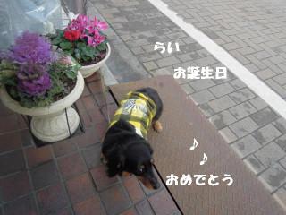 20140304_008