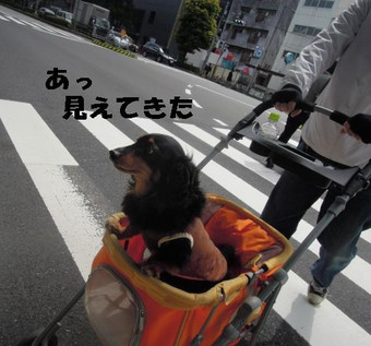 2014004_002_2