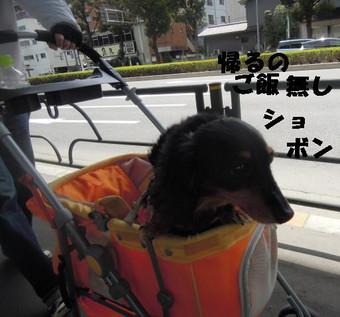 2014004_003_2