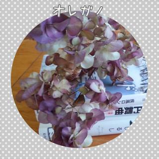 Photogrid_1436665836916