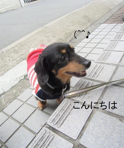 Dscn9741_2